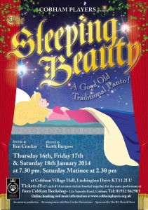Sleeping Beauty A5 Poster low res